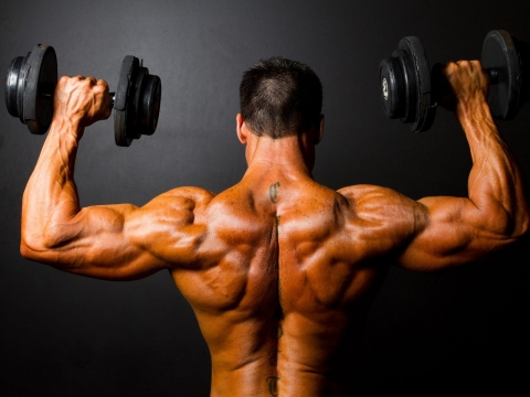Arm Workouts for Men - Bigger Arms in Just One Day